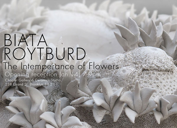 Past Shows: The Intemperance of Flowers by Biata Roytburd